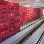 Dopravníkový systém pro akumulaci přepravek 012